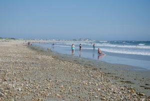 Horseneck Beach In Westport